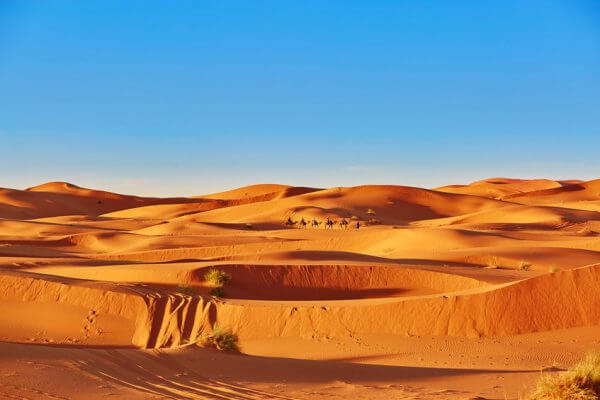 The Sahara Comes To The UK